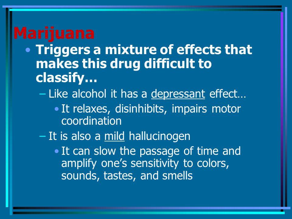 Heroin marijuana alcohol effects Custom paper Sample