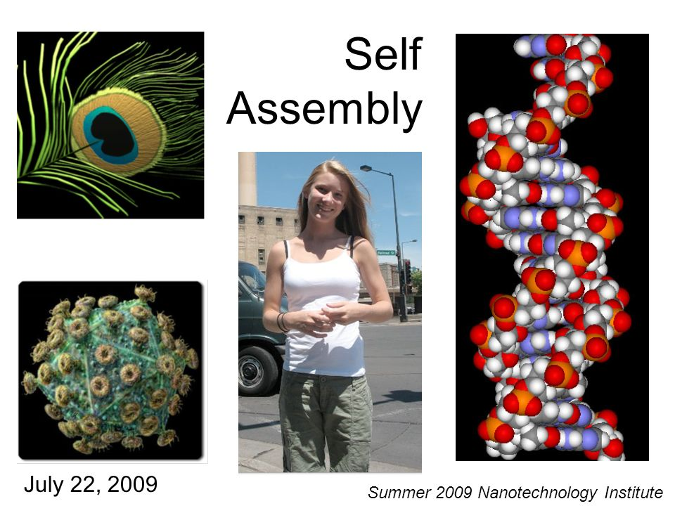 Self Assembly July 22, 2009 Summer 2009 Nanotechnology Institute