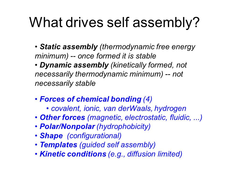 What drives self assembly