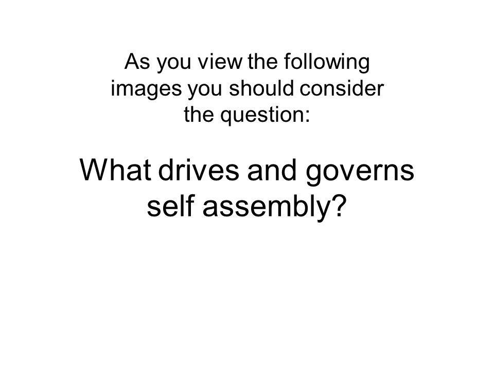 What drives and governs self assembly