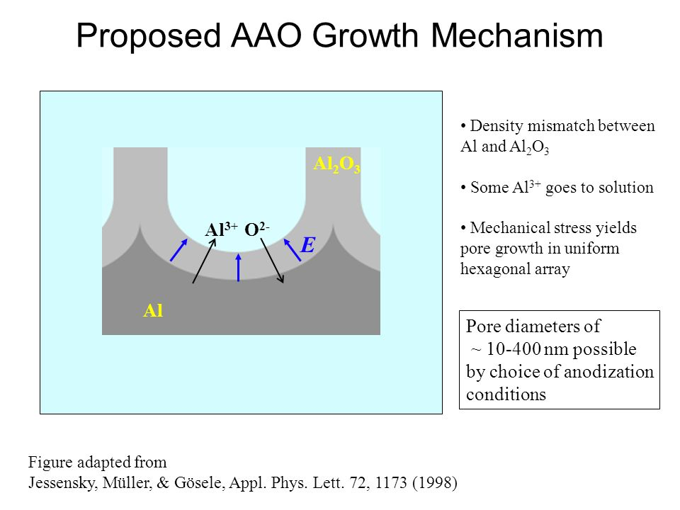 Proposed AAO Growth Mechanism