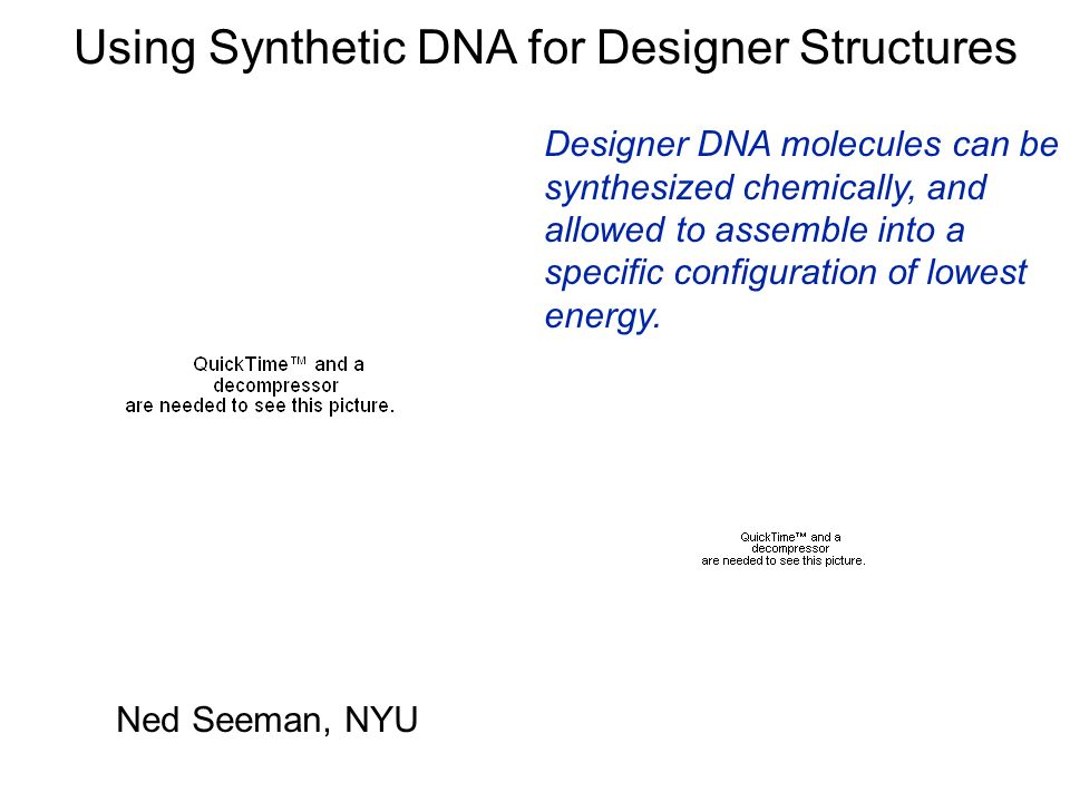 Using Synthetic DNA for Designer Structures