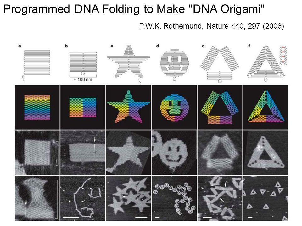 Programmed DNA Folding to Make DNA Origami