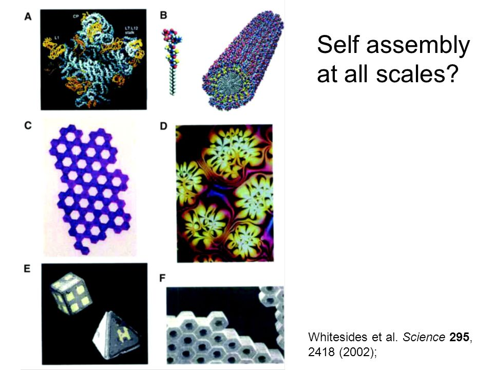 Self assembly at all scales Whitesides et al. Science 295,
