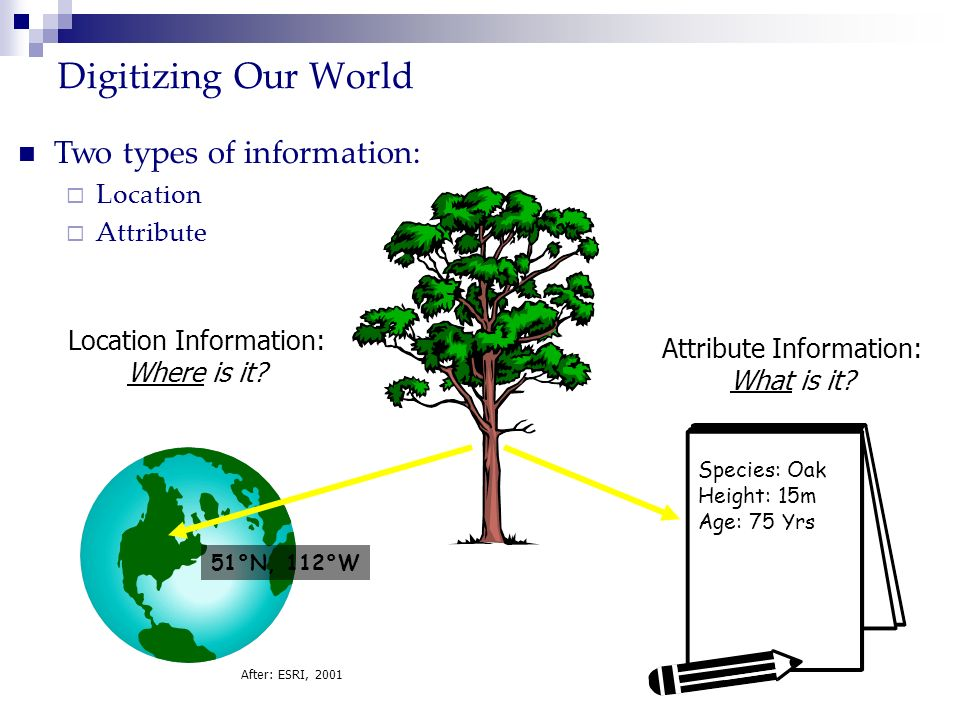 Digitizing Our World Two types of information: Location Attribute