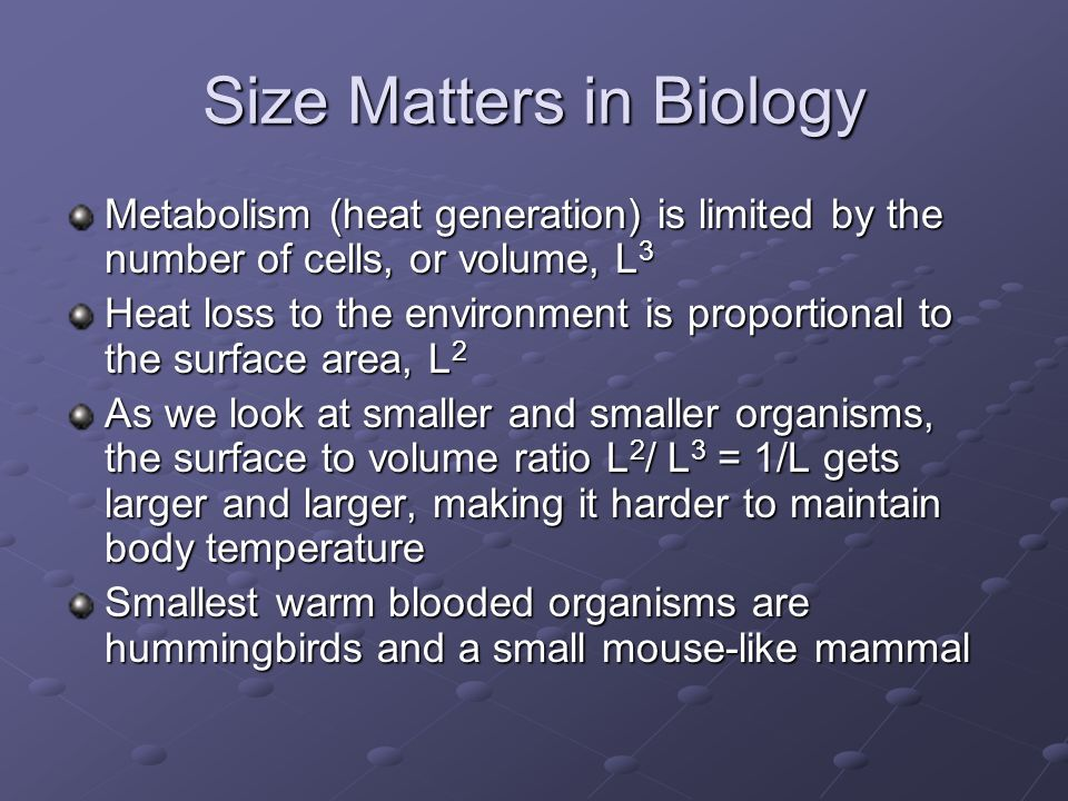 Size Matters in Biology