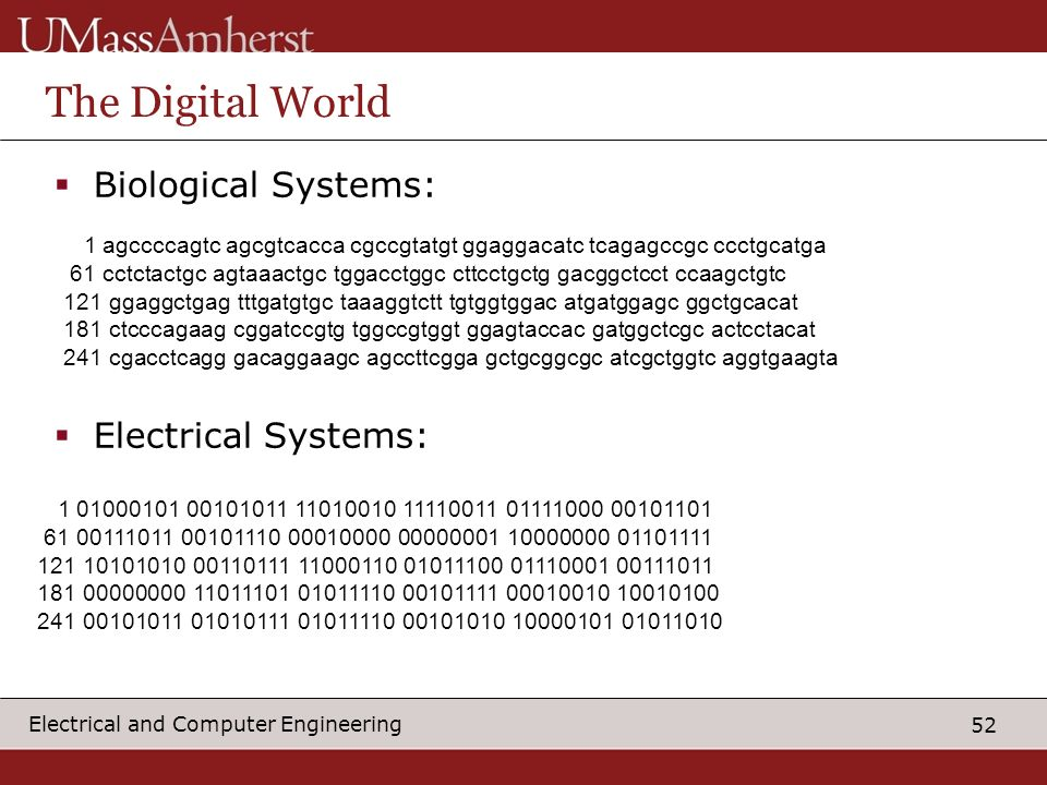 The Digital World Biological Systems: Electrical Systems: