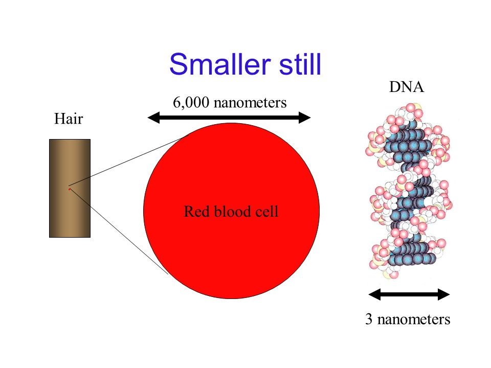 Smaller still DNA 3 nanometers 6,000 nanometers Hair Red blood cell .