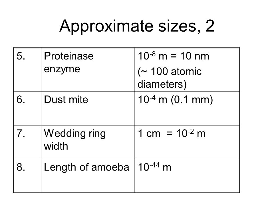 Approximate sizes, 2 5. Proteinase enzyme 10-8 m = 10 nm