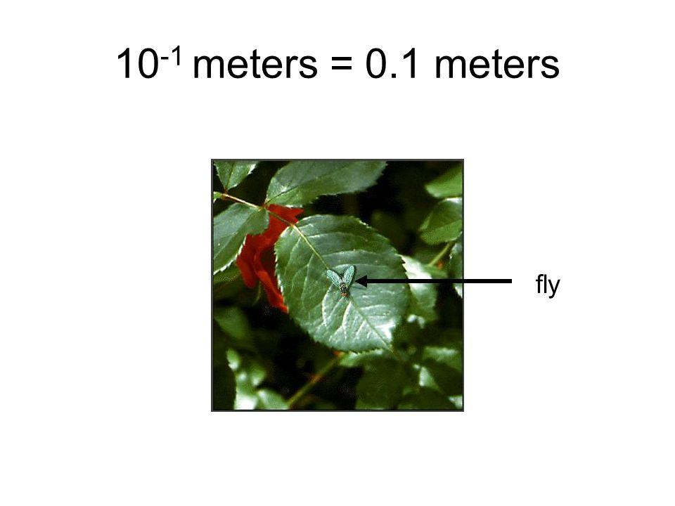 10-1 meters = 0.1 meters fly