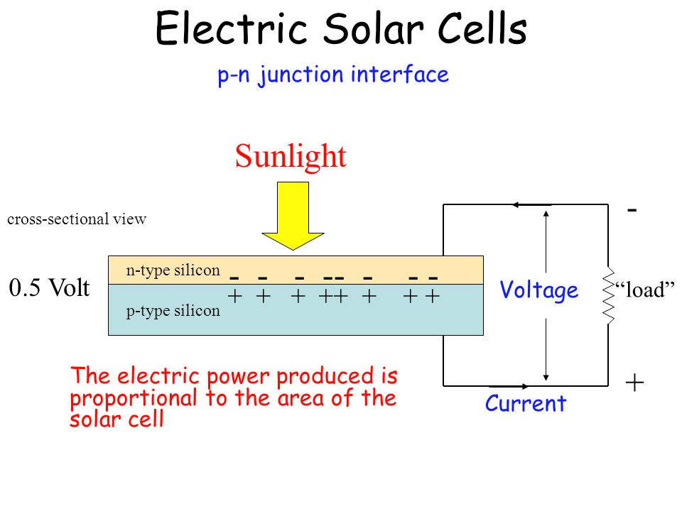 Electric Solar Cells Sunlight - - - - -- - - - + 0.5 Volt
