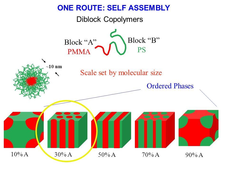 ONE ROUTE: SELF ASSEMBLY
