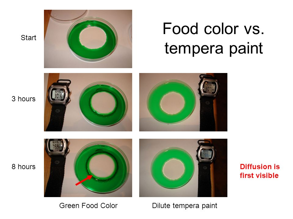 Food color vs. tempera paint