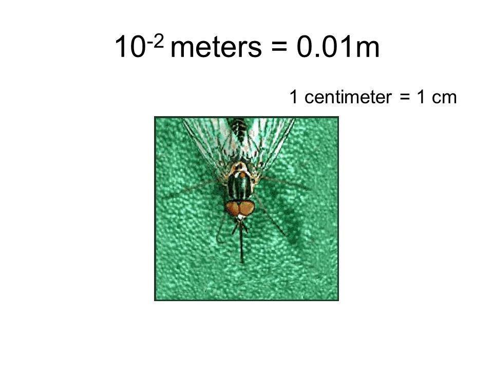 10-2 meters = 0.01m 1 centimeter = 1 cm