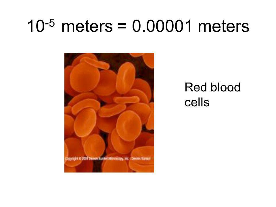 10-5 meters = 0.00001 meters Red blood cells