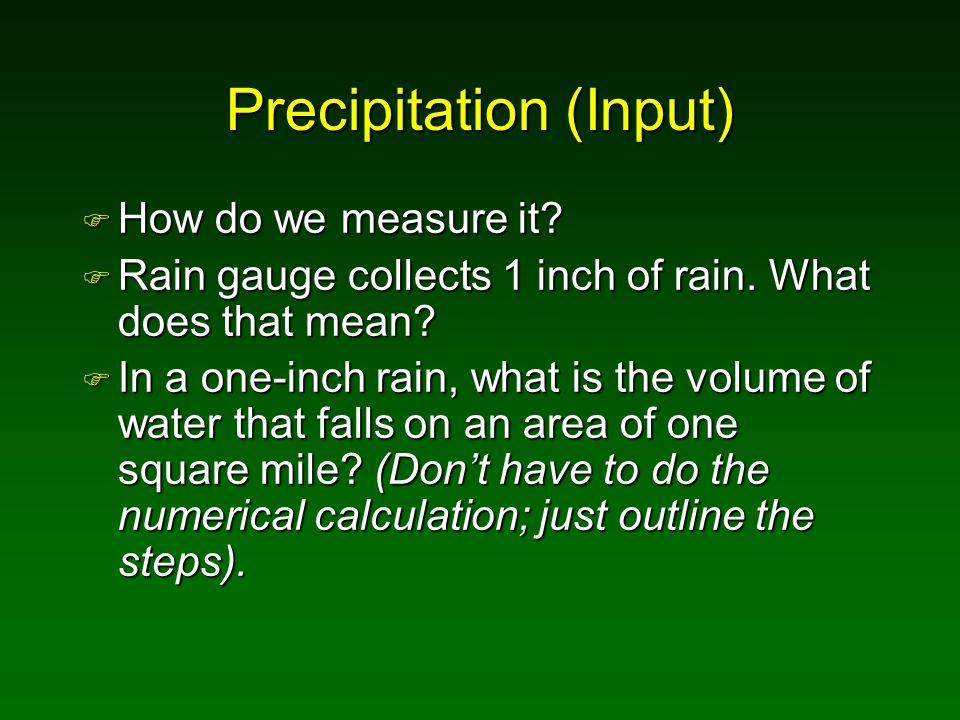 Precipitation (Input)