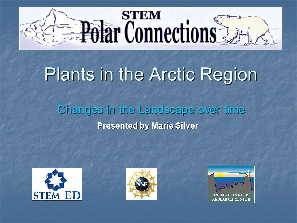 Plants in the Arctic Region