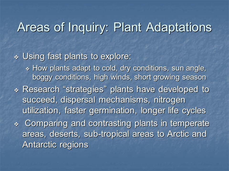 Areas of Inquiry: Plant Adaptations