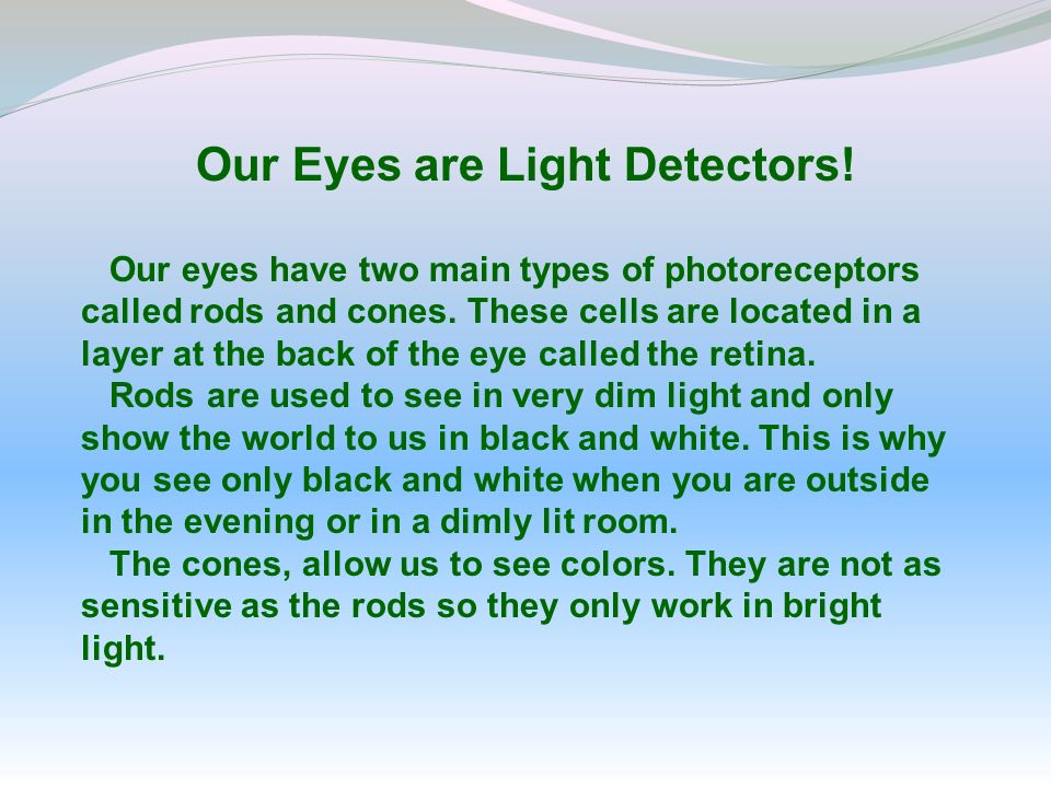 Our Eyes are Light Detectors!