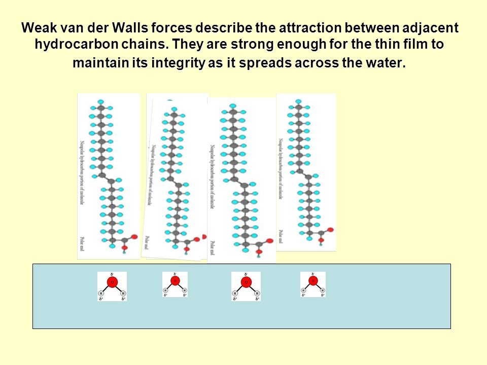 Weak van der Walls forces describe the attraction between adjacent hydrocarbon chains.