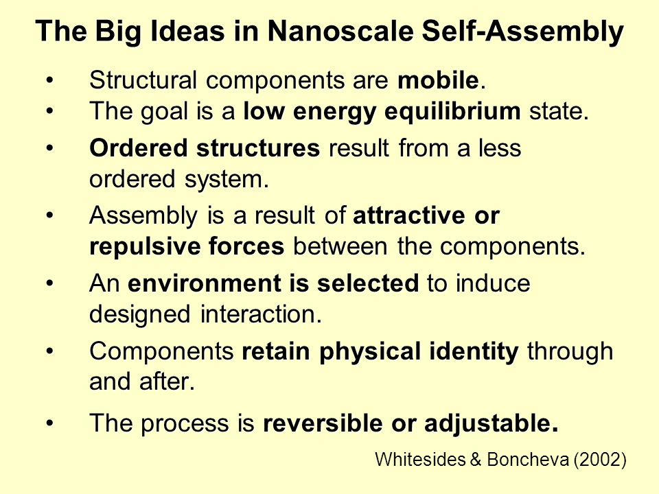 The Big Ideas in Nanoscale Self-Assembly