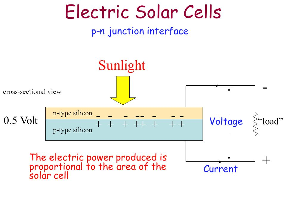 Electric Solar Cells Sunlight - - - - -- - - - + 0.5 Volt