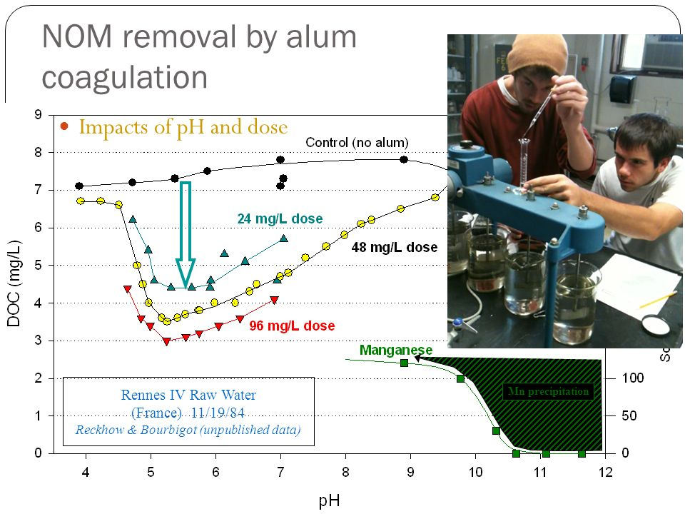 NOM removal by alum coagulation