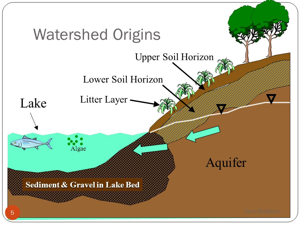 Watershed Origins Lake Aquifer Upper Soil Horizon Lower Soil Horizon