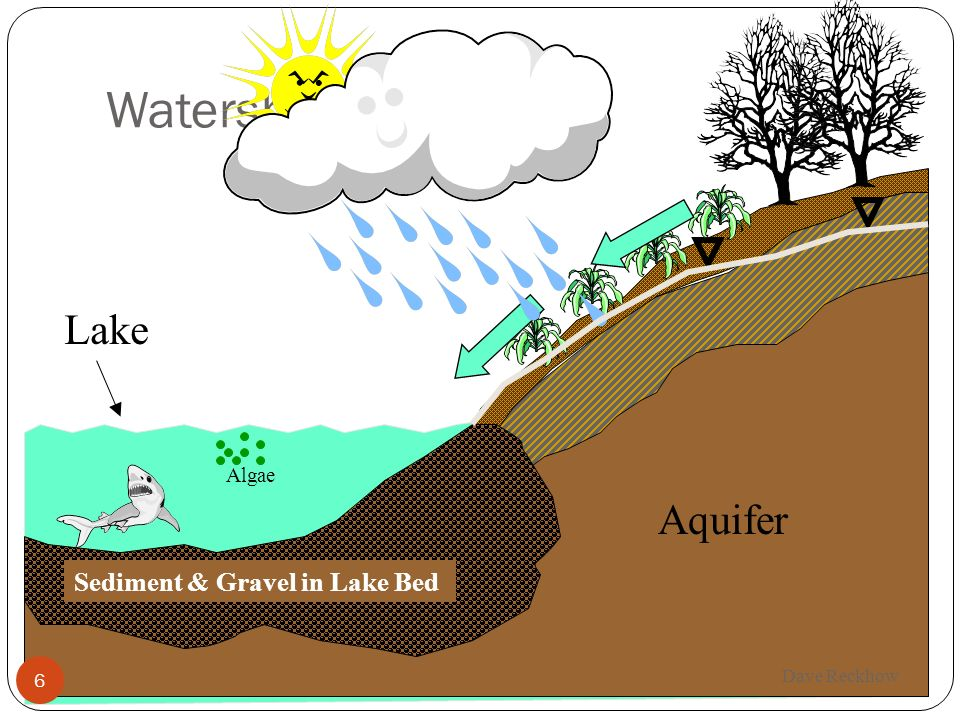 Watershed Origins Lake Aquifer Sediment & Gravel in Lake Bed Algae