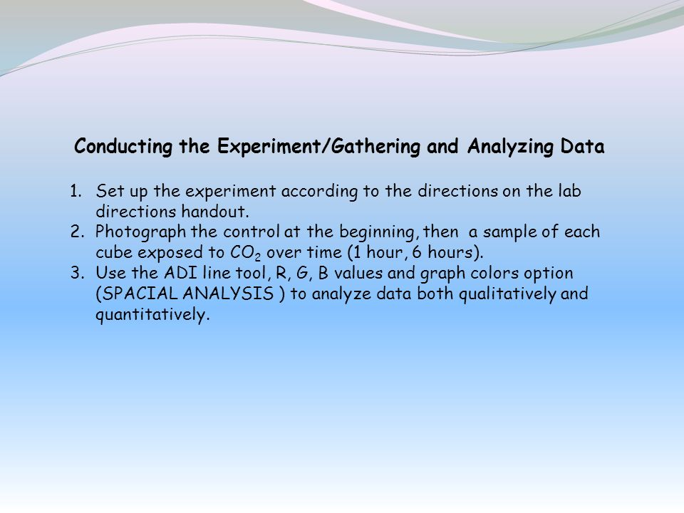 Conducting the Experiment/Gathering and Analyzing Data