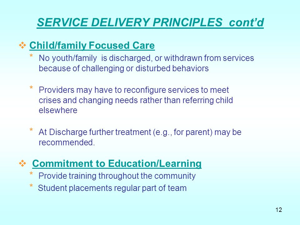 principles of service delivery pdf