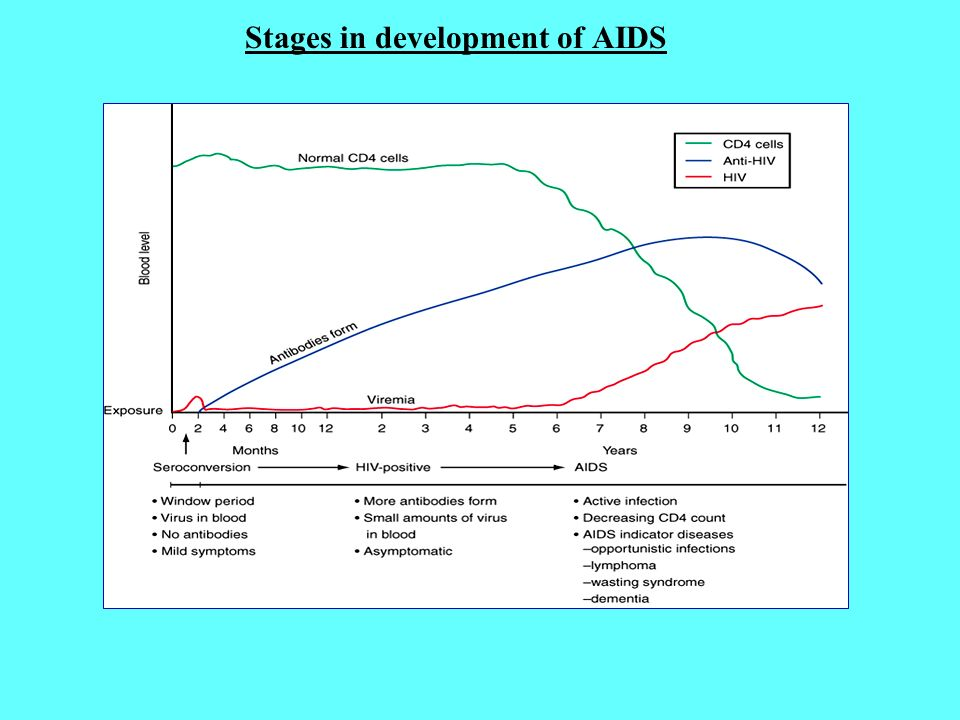 The History and Development of AIDS