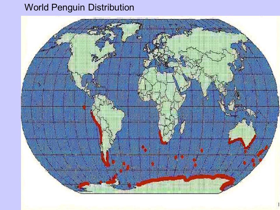 World Penguin Distribution
