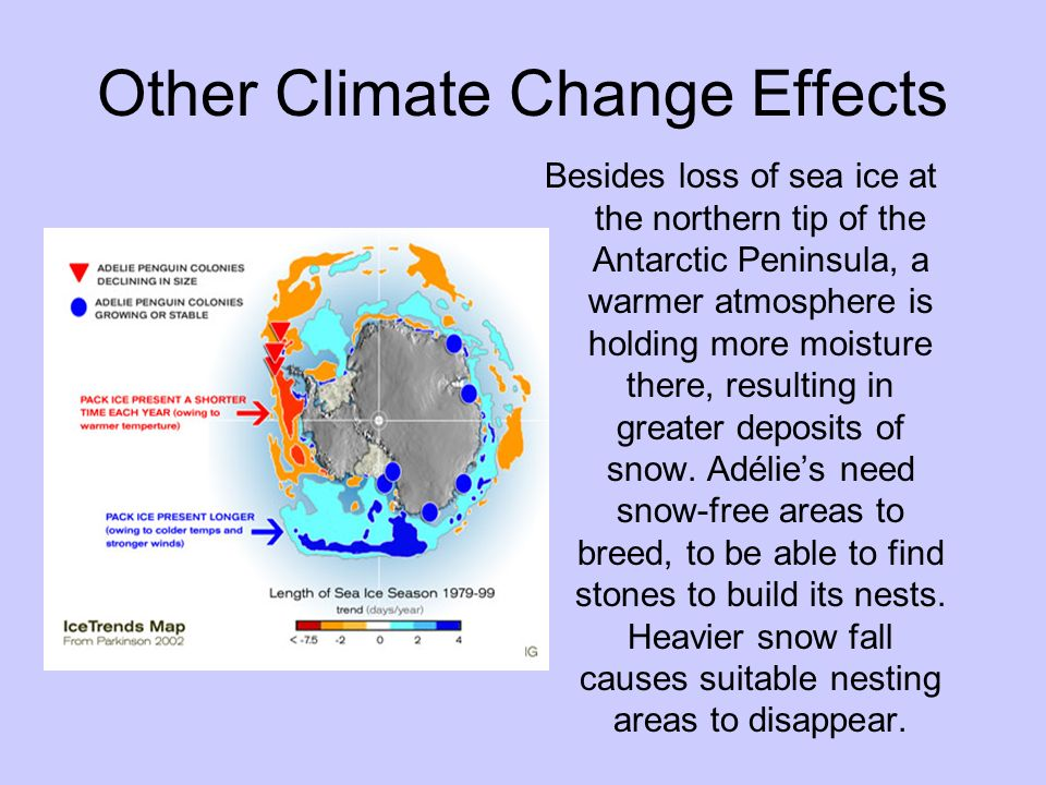 Other Climate Change Effects