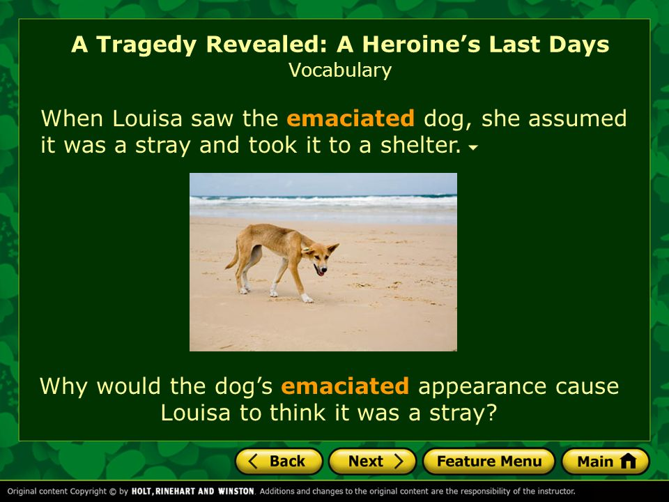 A Tragedy Revealed: A Heroine's Last Days (Timeline)