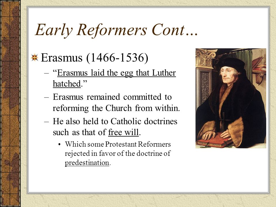did erasmus lay the egg luther View notes - erasmus and luther_laying the egg and hatching it from hs hs041 at boston college history erasmus and luther: laying the egg and hatching it problem with church in 1500s everyone knew.