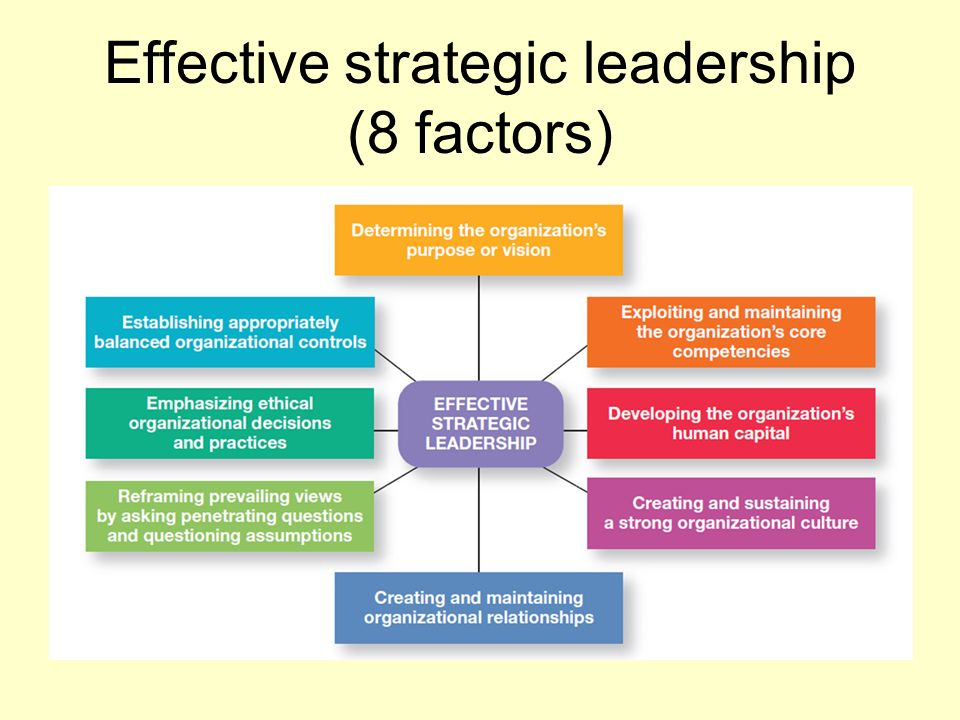established strategy for leadership essay