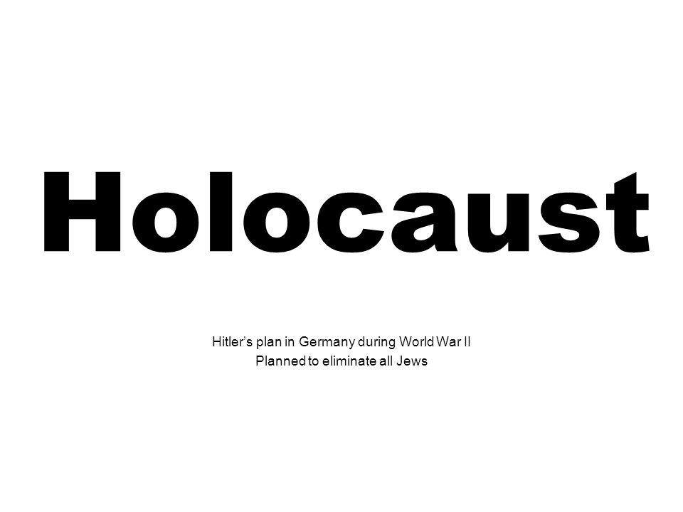 Holocaust Hitler's plan in Germany during World War II