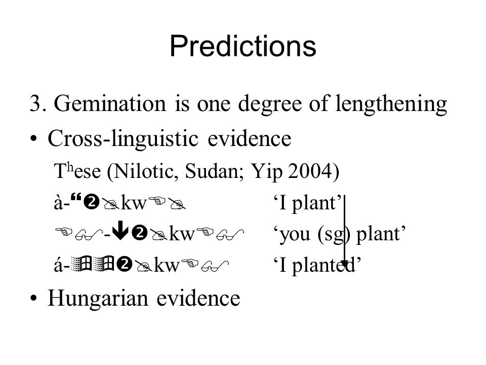 Predictions 3. Gemination is one degree of lengthening
