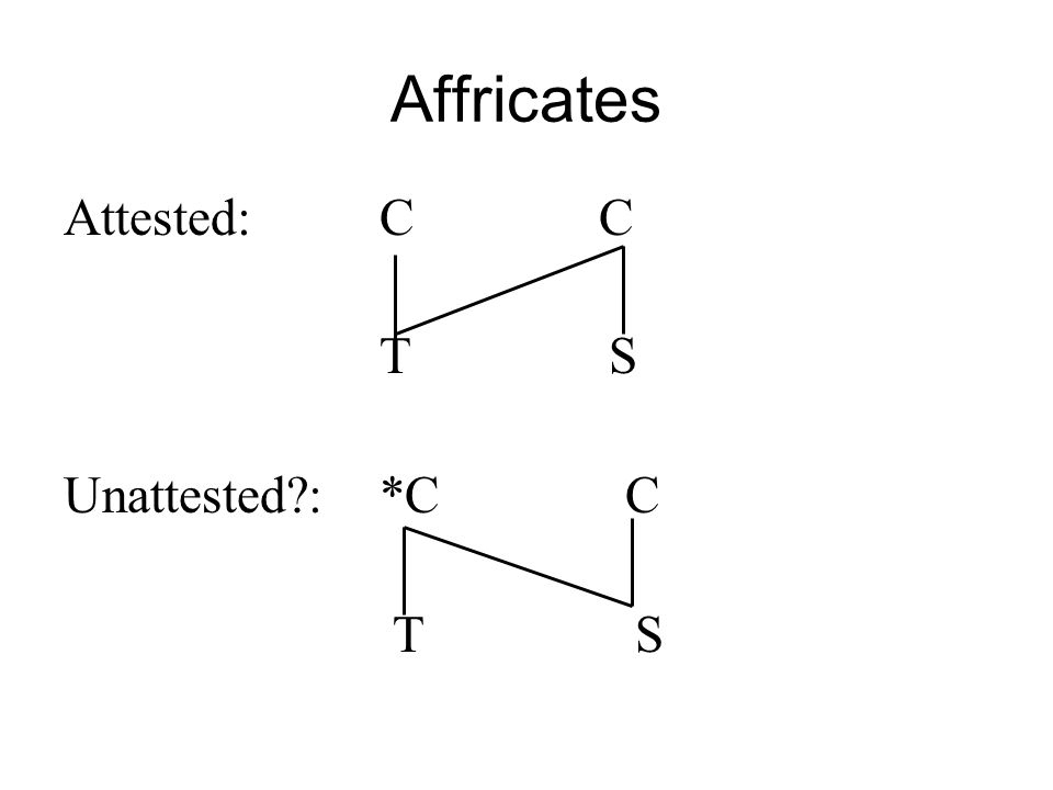 Affricates Attested: C C. T S.