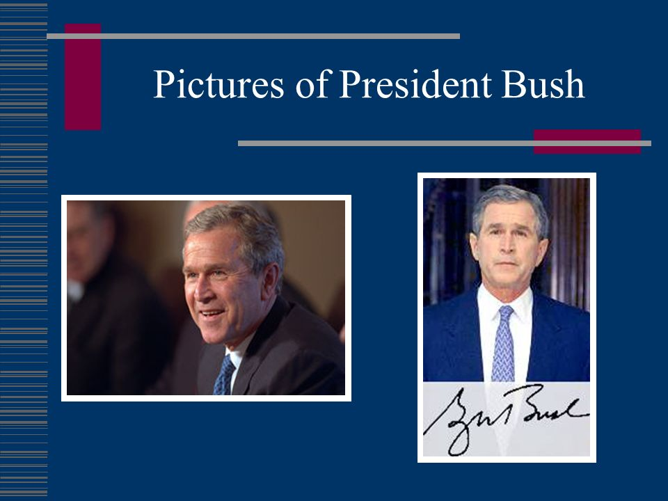 Pictures of President Bush