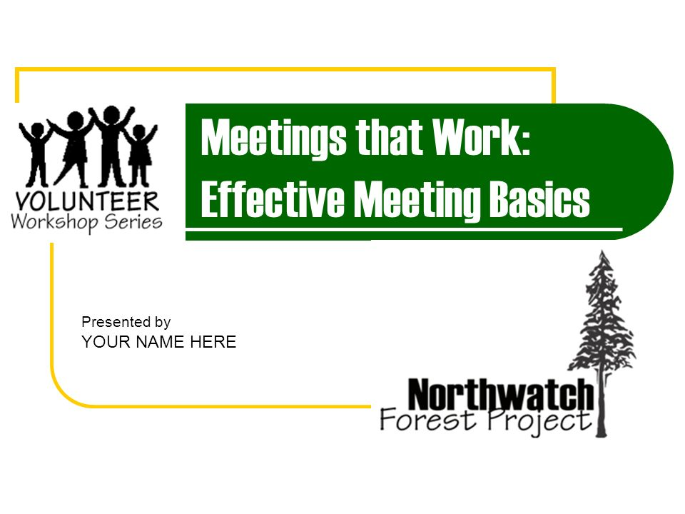Meetings that Work: Effective Meeting Basics