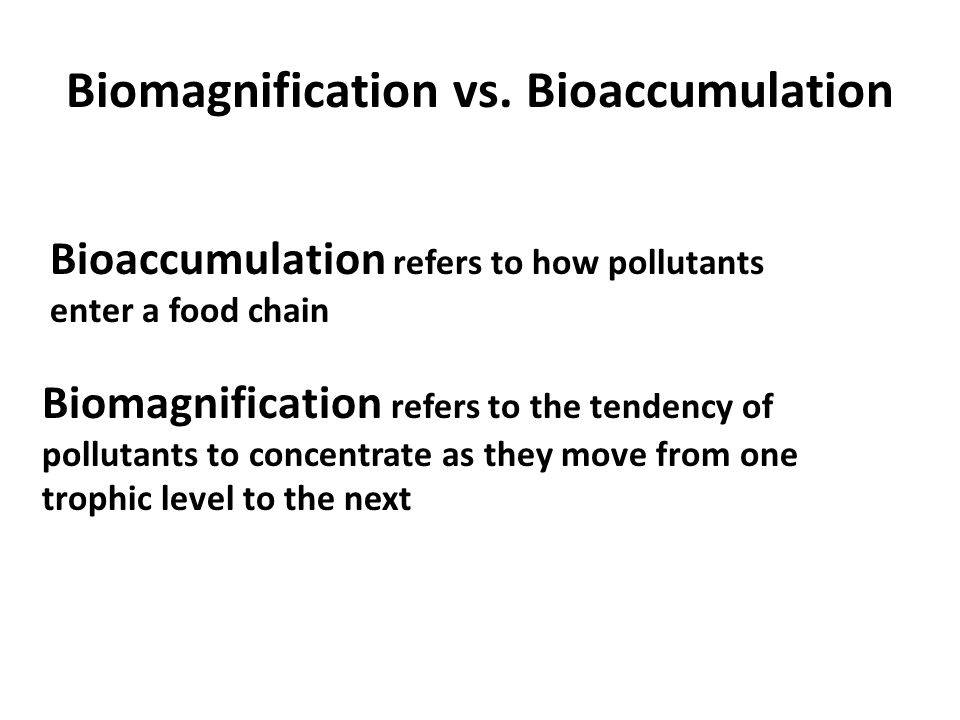 APES Food for Thought Trophic Levels ppt video online download – Biomagnification Worksheet