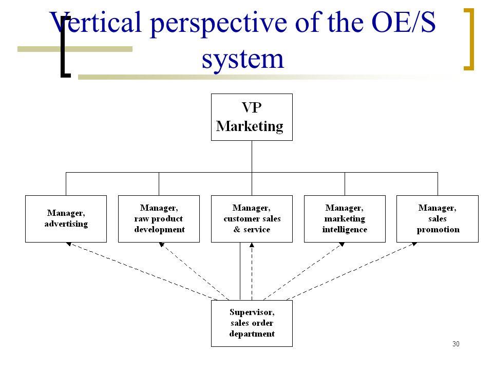 Vertical perspective of the OE/S system