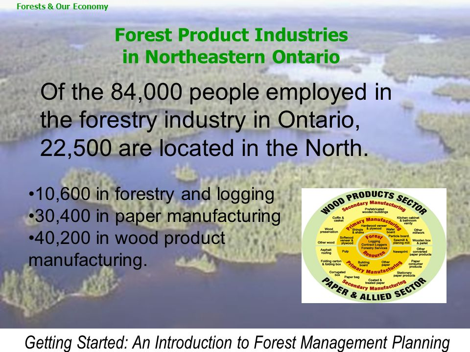 Forest Product Industries in Northeastern Ontario