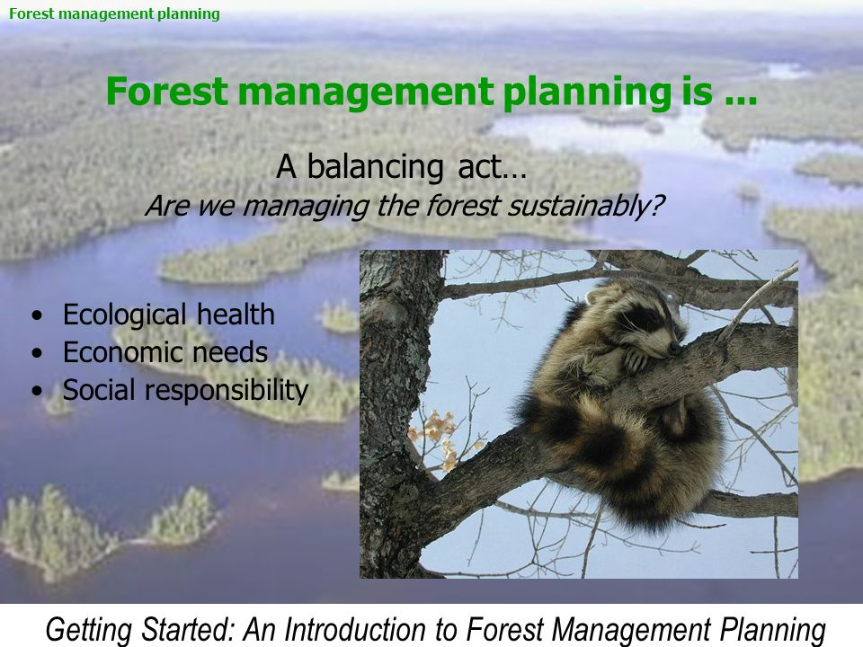 Forest management planning is ...