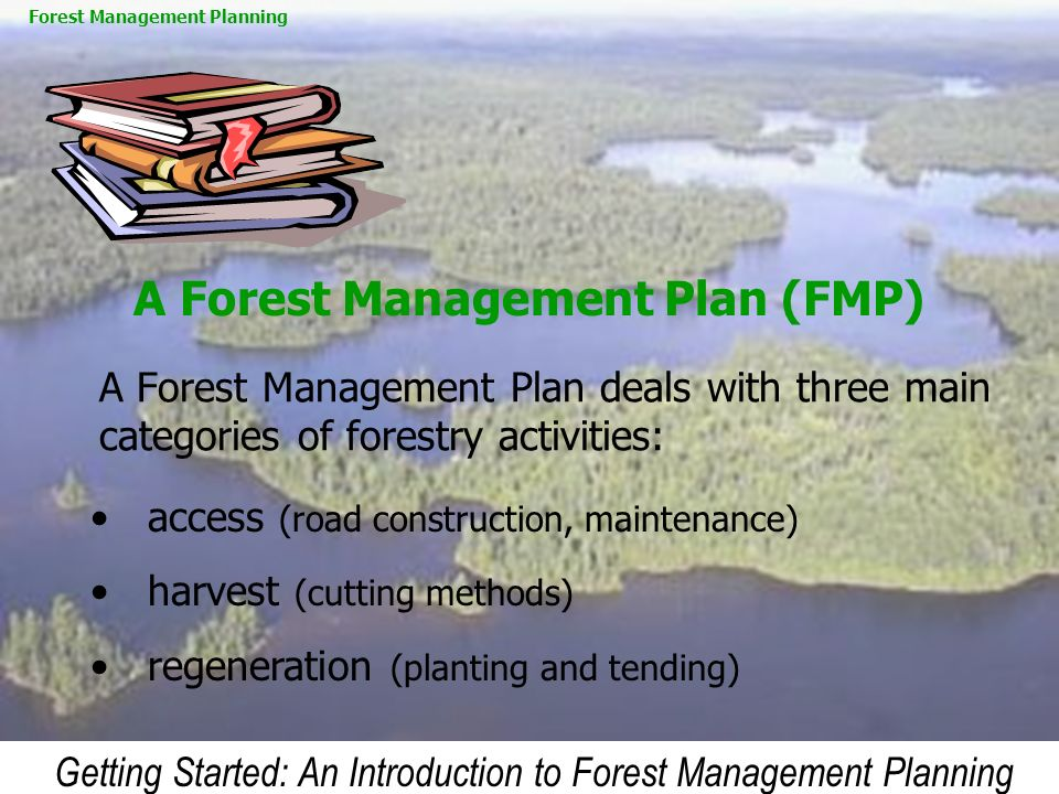 A Forest Management Plan (FMP)