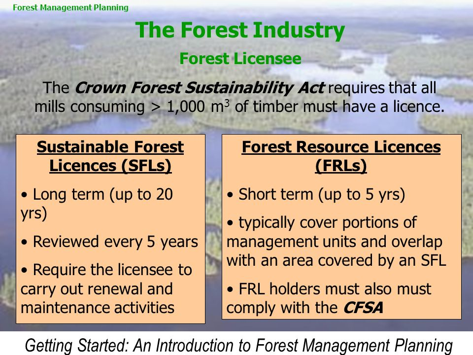The Forest Industry Forest Licensee