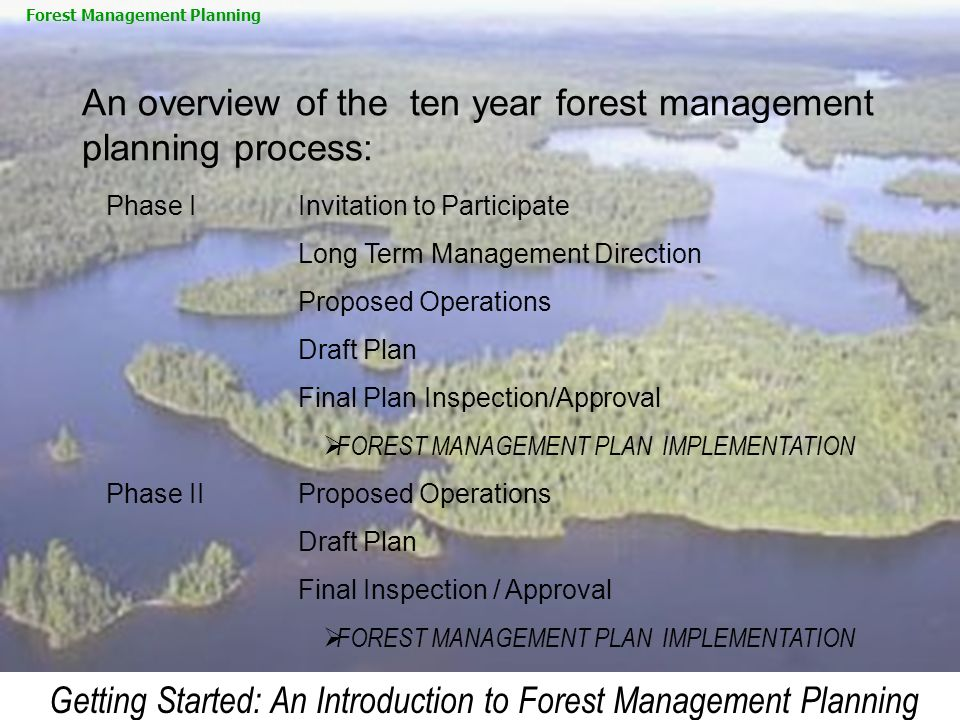 An overview of the ten year forest management planning process: