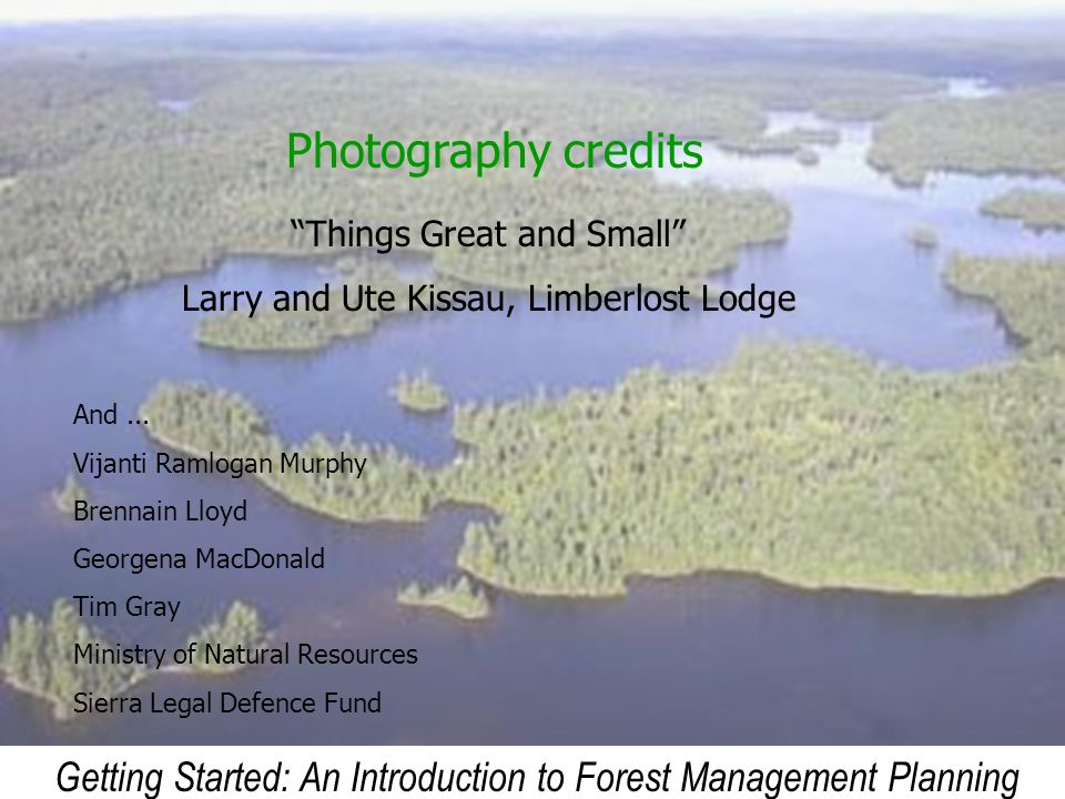 Photography credits Things Great and Small Larry and Ute Kissau, Limberlost Lodge. And ... Vijanti Ramlogan Murphy.